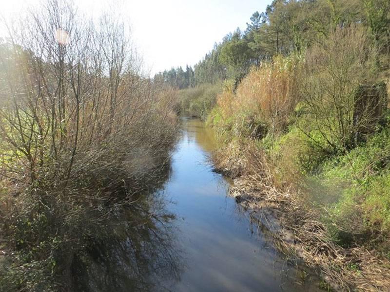 Alfeizerão River
