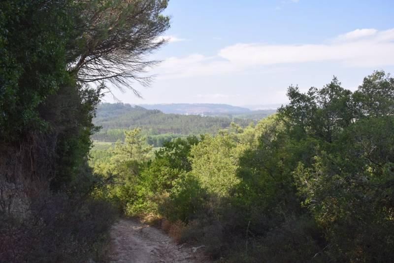 view-west-from-ridge-harry-heijkoop